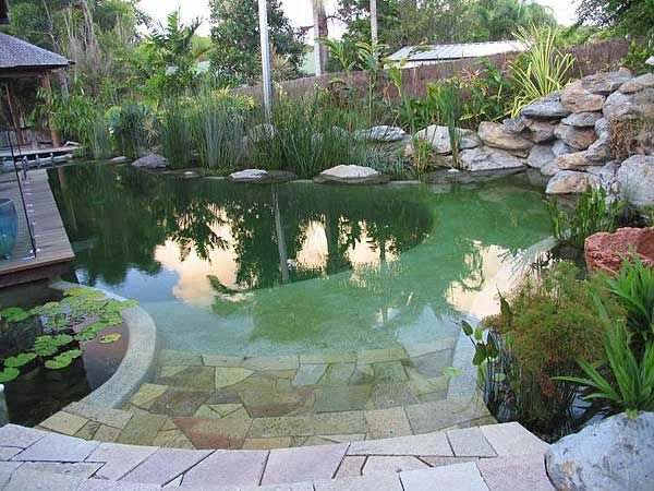How To Setup A Fresh Water Pool
