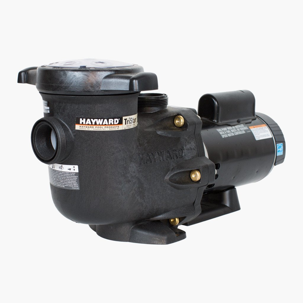 replace pool pump motor or whole pump itself find out